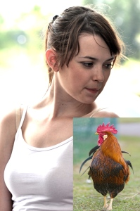 woman and rooster