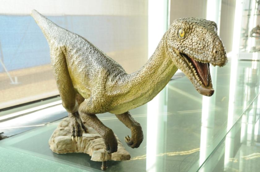 Silezaur